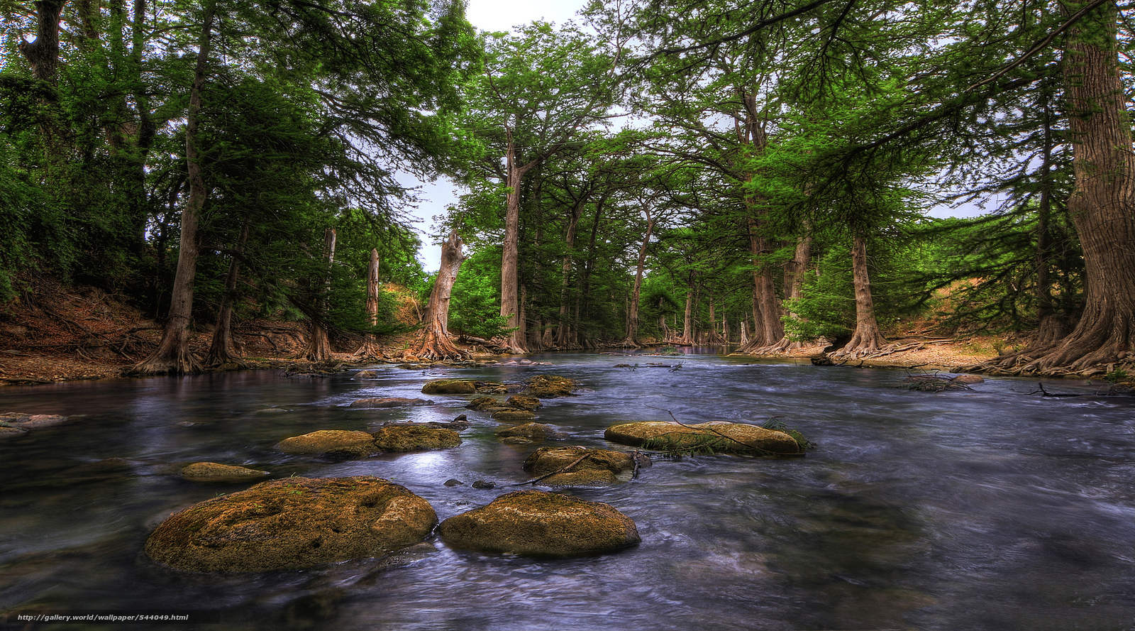Download Wallpaper Guadalupe River Hill Country Texas