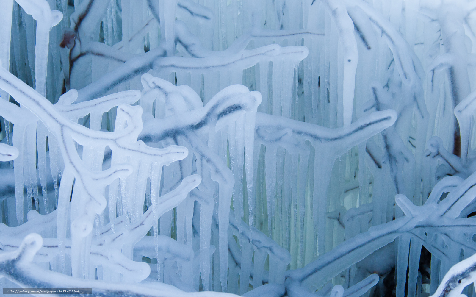 icicles wallpaper - photo #19