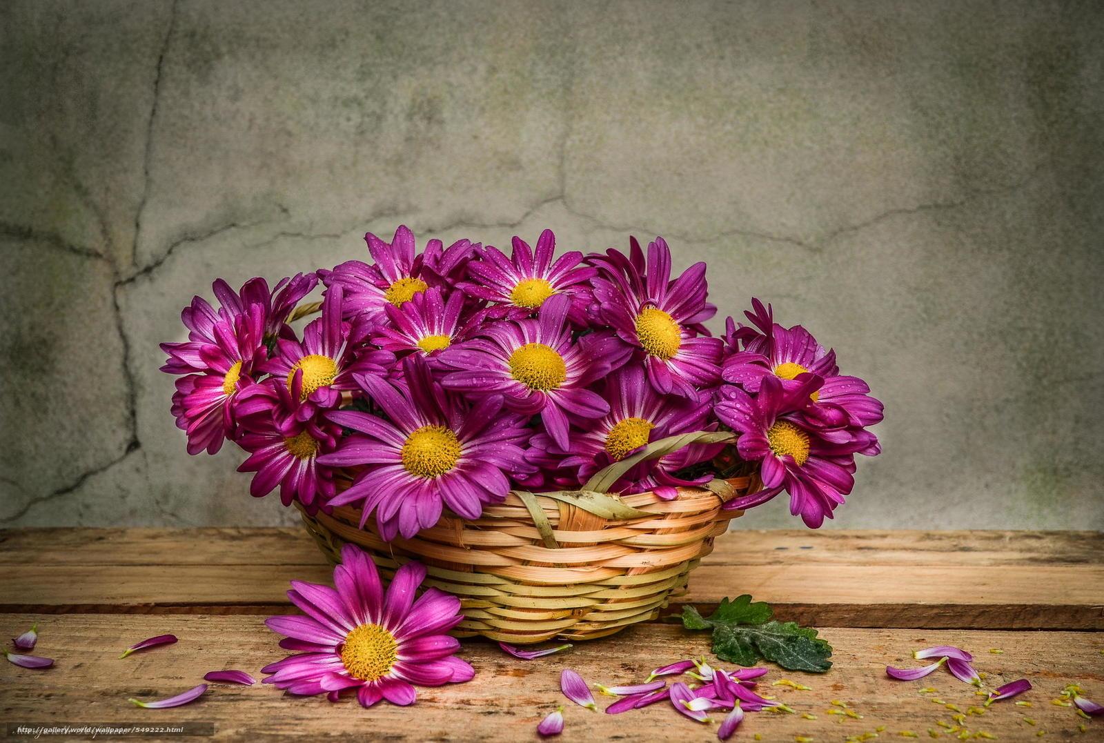 Flower Baskets Hd : Download wallpaper nature flowers flower bouquet free