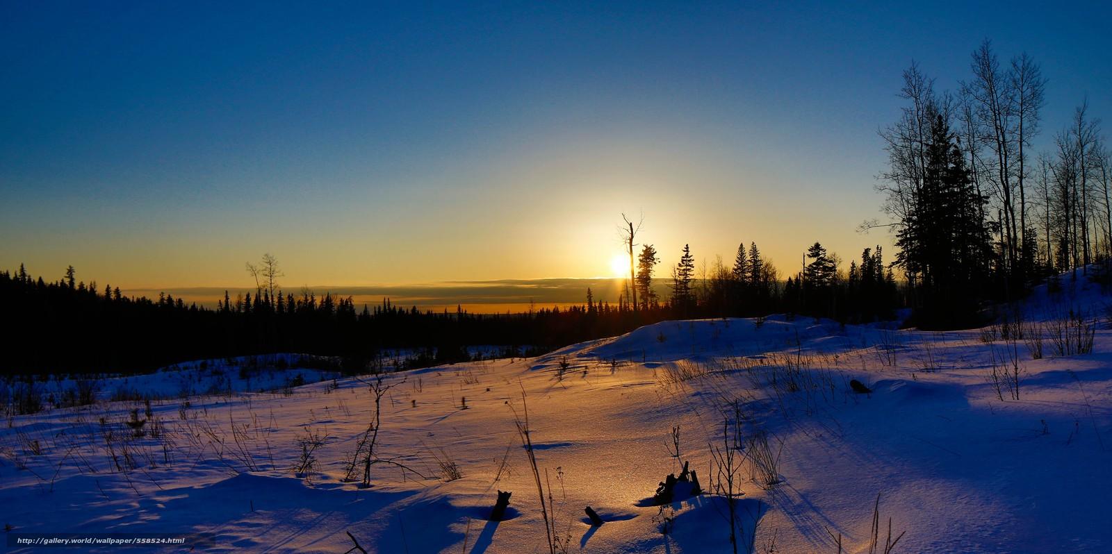 Поле деревья закат пейзаж зима