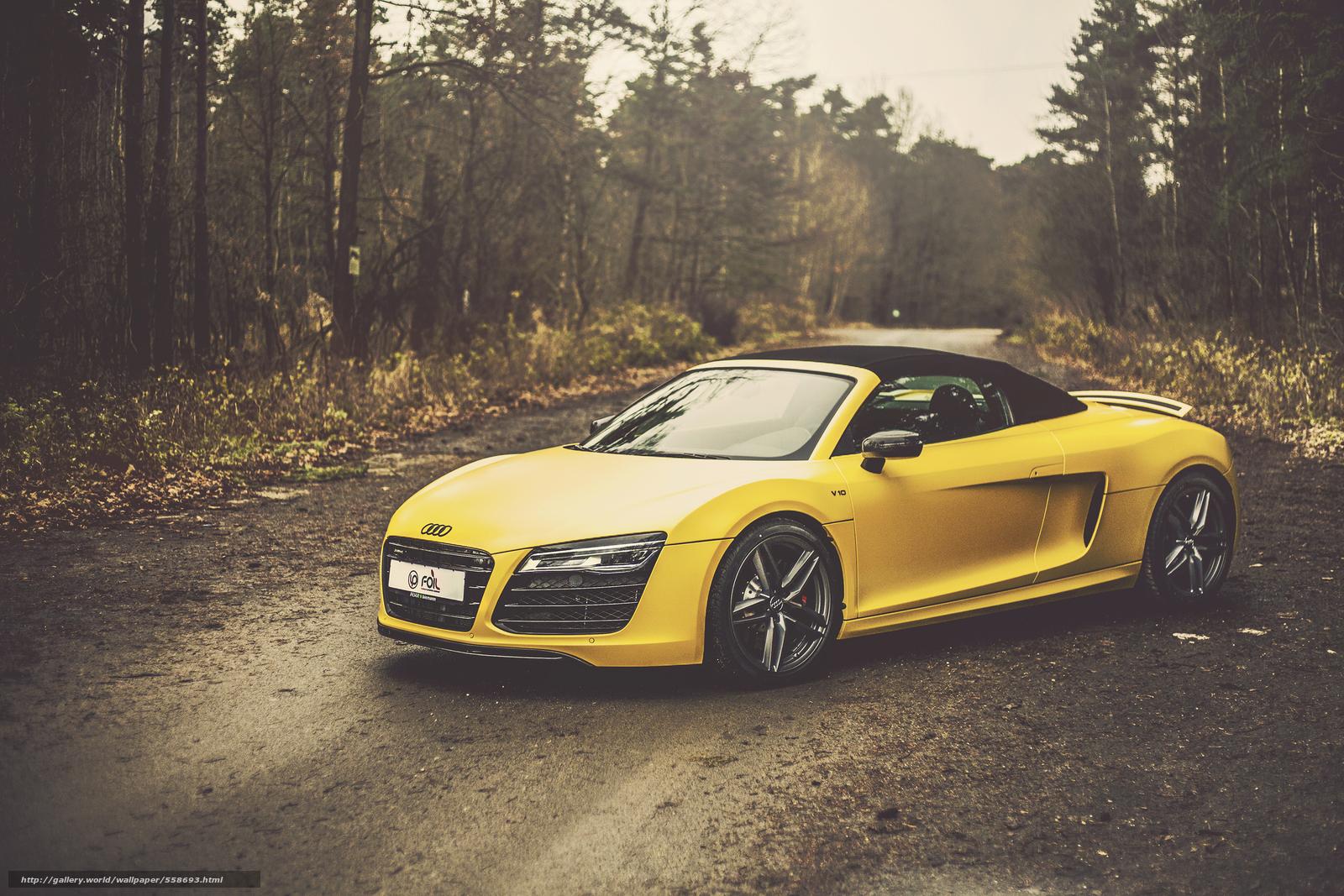 Audi r8 v10 lms ultra csr 5
