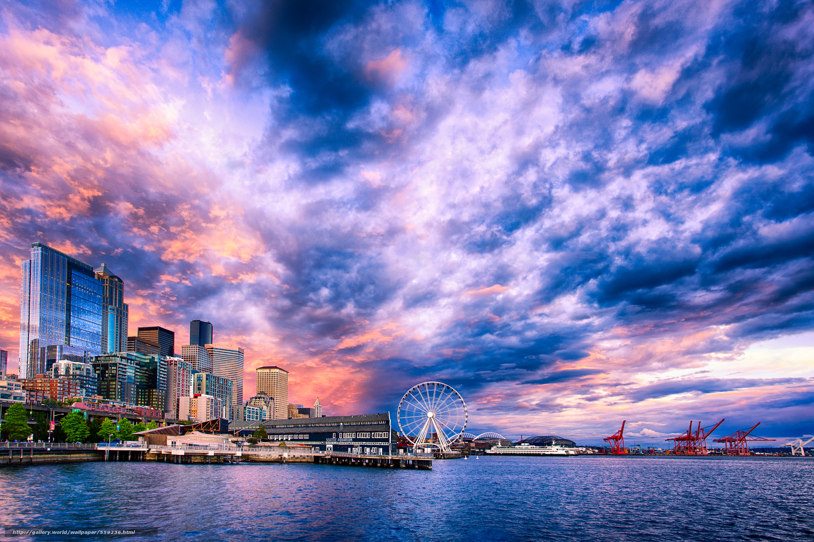 free download wallpapers seattle - photo #32