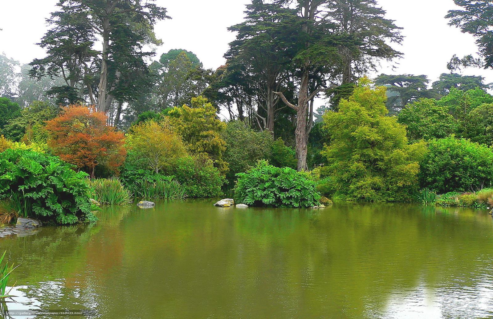 Download Wallpaper San Francisco Botanical Garden Golden Gate Park Free Desktop Wallpaper In