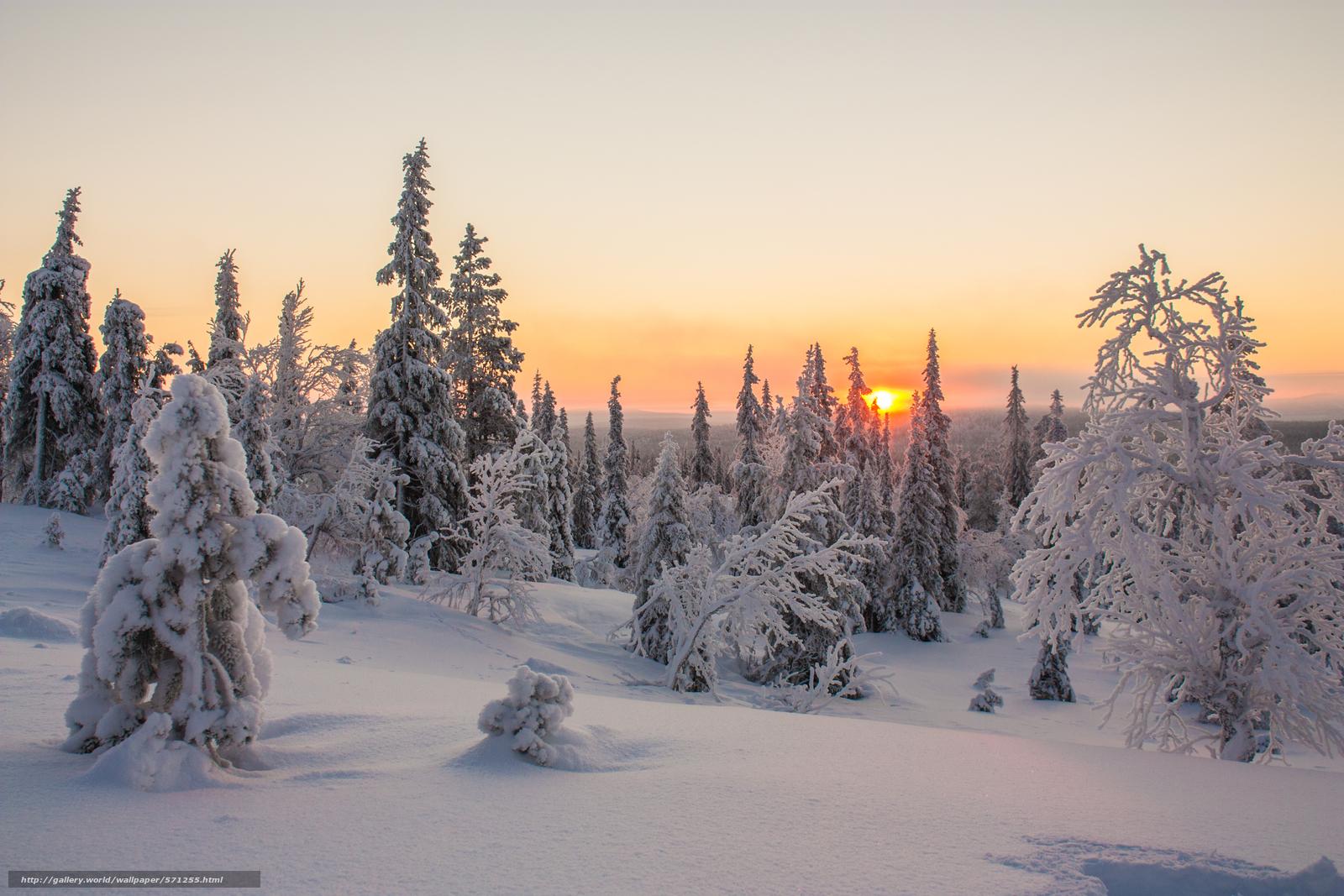 Tlcharger fond d 39 ecran laponie coucher du soleil hiver for Sfondi gratis desktop inverno