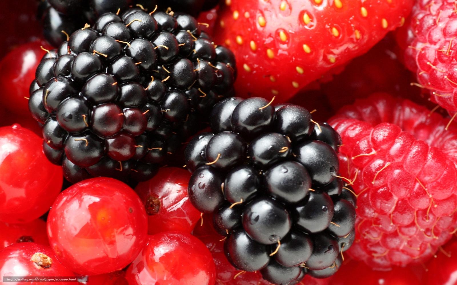 Фрукты и ягоды Картинки  coolladyru