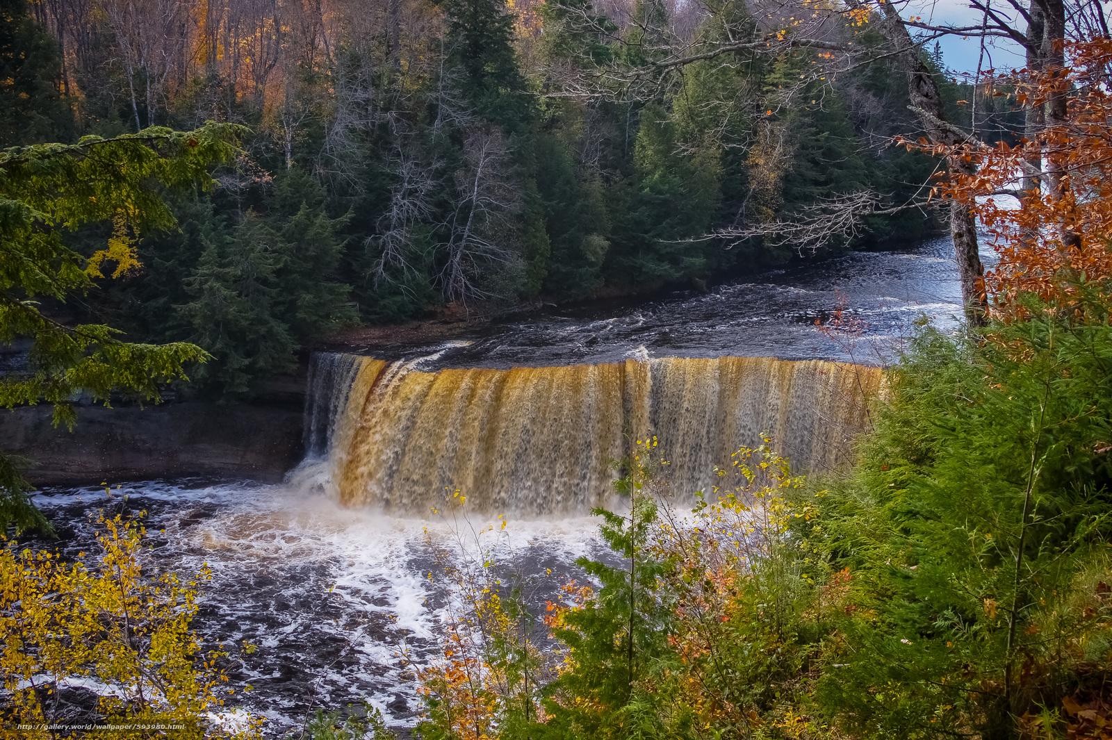 下载壁纸 河, 森林, 树, 瀑布 免费为您的桌面分辨率的壁纸 4592x3056