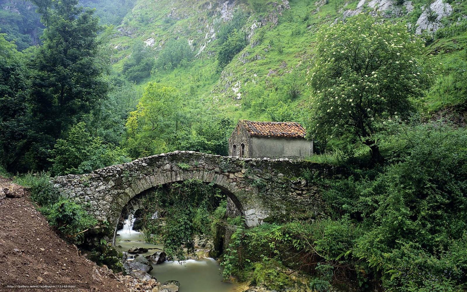 Дом мост картинки