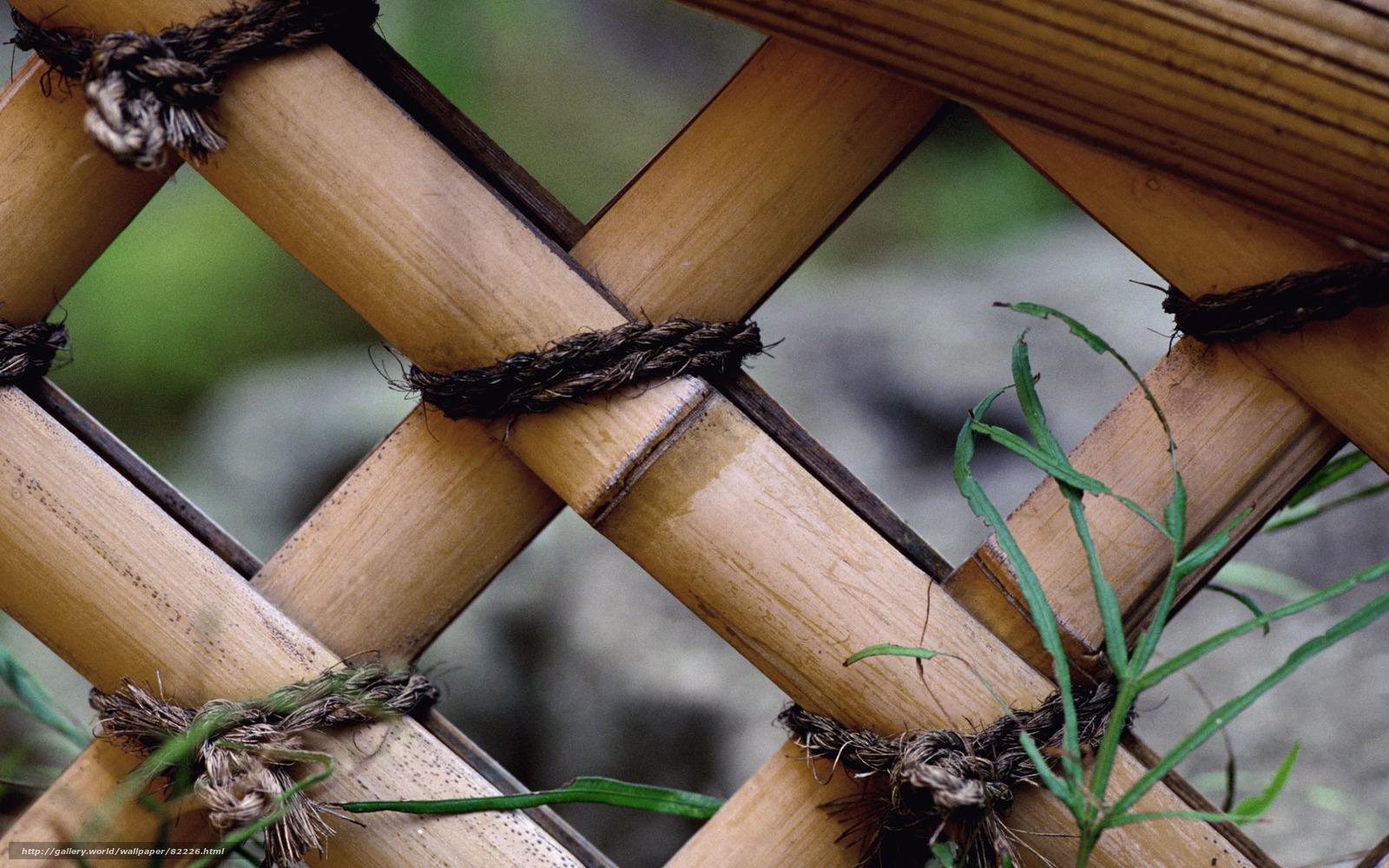 Baixar Wallpaper Bambu, Cerca, Jardim Papis De Parede Grtis Na Resoluo ~ Cerca Para Jardim De Bambu