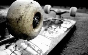 skateboard, umezeal, este