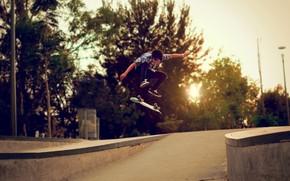 tip, Patina, skateboard, strad, copaci