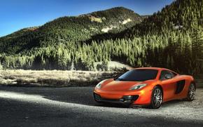 McLaren, orange, Mountains, forest, ate, pine, supercars