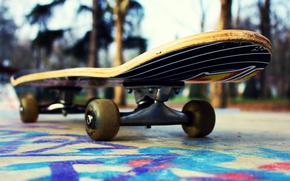 Skateboard, strad, ora, stil, graffiti, freestyle