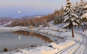ksiyc, las, krajobraz, dom, jezioro, droga, zima, noc, Drzewa, Boris Bessonov, zdjcie, Gry