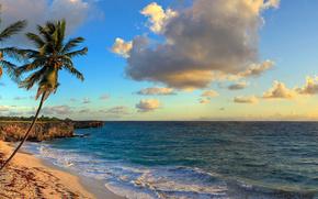 Plaja de jos Bay, Barbados, caraibe, Marea Caraibelor, Barbados, Insulele Caraibe, palmier, coast, tropice, rsrit, mare