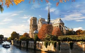 Notre Dame de Paris, Catedral de Notre Dame, Notre Dame de Paris, França, Paris, França, Paris, cidade, rio, Feno, ponte, arquitetura, natureza, outono