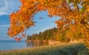 trees, landscape, lake, Michigan, autumn