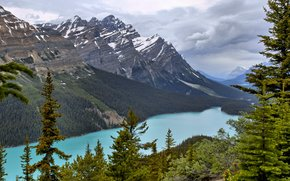 river, Mountains, Banff National Park, landscape, Peyto Lake