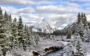 small river, forest, Alberta, trees, Snow Fall, landscape