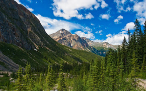 Mountains, trees, Canada, landscape, Jasper National Park