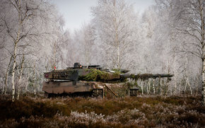 grass, trees, forest, battle, tank