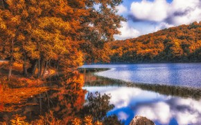 trees, landscape, autumn, lake