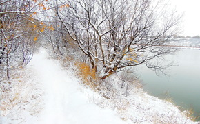winter, river, road, trees, landscape