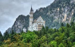 Neuschwanstein Castle, лес, скалы, замок, пейзаж