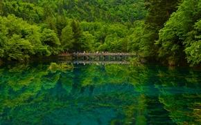Jiuzhaigou, Sichuan, China, Цзючжайгоу, Сычуань, Китай, заповедник, озеро, мост, лес, отражение
