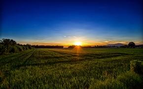 Carinthia, Austria, Каринтия, Австрия, поле, закат