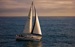Californie, Océan Pacifique, Californie, Pacifique, océan, yacht, voile, HORIZON