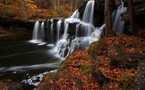 Brush Creek Falls, West Virginia, Virginie De L'Ouest, cascade, cascade, rivière, automne, feuillage, forêt