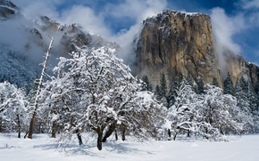 El Capitan, Yosemite National Park, California, munte El Capitan, Yosemite National Park, Yosemite, California, iarnă, zăpadă, copaci, Munți