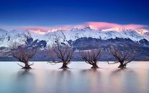 Lake Wakatipu, Queenstown, New Zealand, Southern Alps, озеро Уакатипу, Куинстаун, Новая Зеландия, Южные Альпы, озеро, горы, деревья