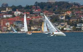 Sydney Harbour, Sydney, Australia, Сиднейская бухта, Сидней, Австралия, яхты, регата, здания
