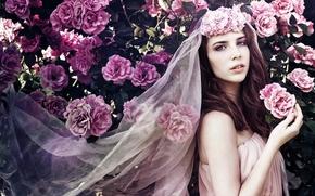 Rebekah Van Zant, невеста, фата, розы, цветы, розовый куст, куст, настроение. стиль