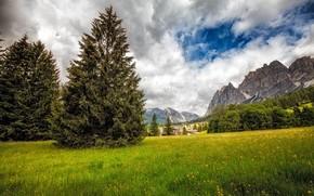 Dolomiți, Italia, domeniu, Munți, copaci, peisaj