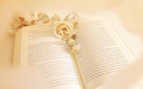 libro, Flores, estilo