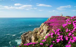 Suances, Cantabria, Spania, Golful Biscaya, Suances, Cantabria, Spania, Golful Biscaya, golf, ocean, Rocks, Flori, coastă
