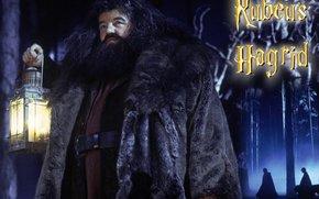 harry potter und der halbblutprinz film kostenlos anschauen