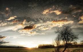 Пейзажи: восход, закат, слонце, степь, ручей