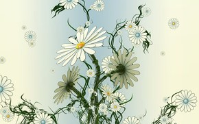 Разное: ромашки, цветы, плоский, сухой, вялый