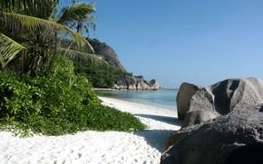 Пейзажи: тропический пляж, песок, море, камни, тростник