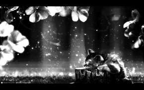 Стиль: темнота, котенок, сны, лучи, мечты, цветы