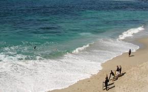 Природа: пляж, песок, море, волные, люди