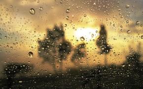 Текстуры: дождь, капли, близость, стекло, мутность, золото