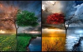 Стиль: времена года, место, дерево, природа, природная красота