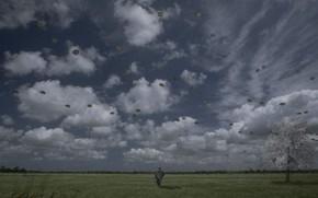 Настроения: грусть, одиночество, пустота, пасмурно, степь, полет, свобода, надписи