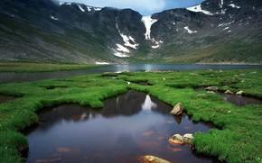 Пейзажи: горы, река, природа, зелень, жизнь