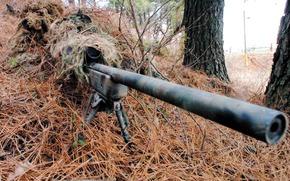 Оружие: снайпер, оружие, прицел, укрытие, маскировка