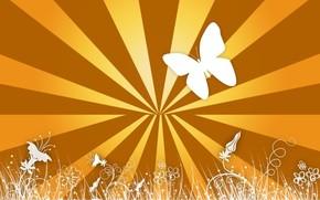 Разное: бабочки, радость, жёлтый, линии